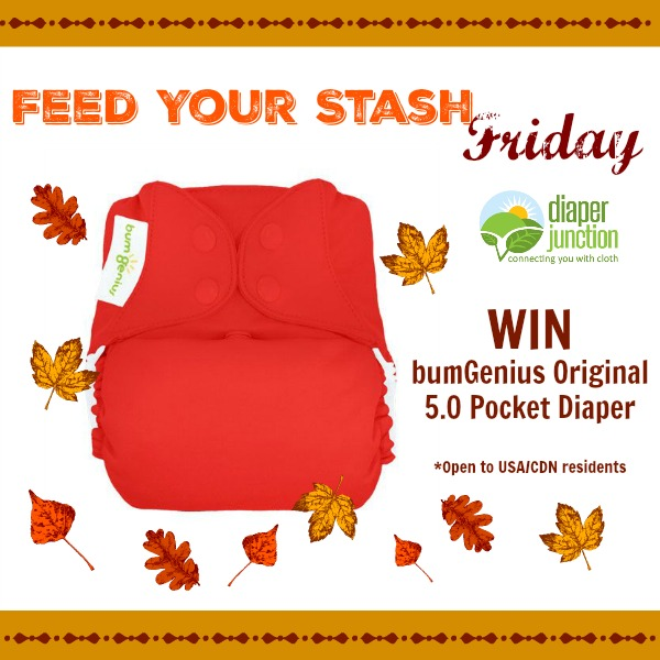 WIN bumGenius 5.0 Original Pocket Diaper from Diaper Junction in our Feed Your Stash Friday Giveaway