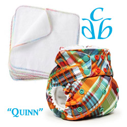 quinn,dexter,rumparooz,cloth diapers