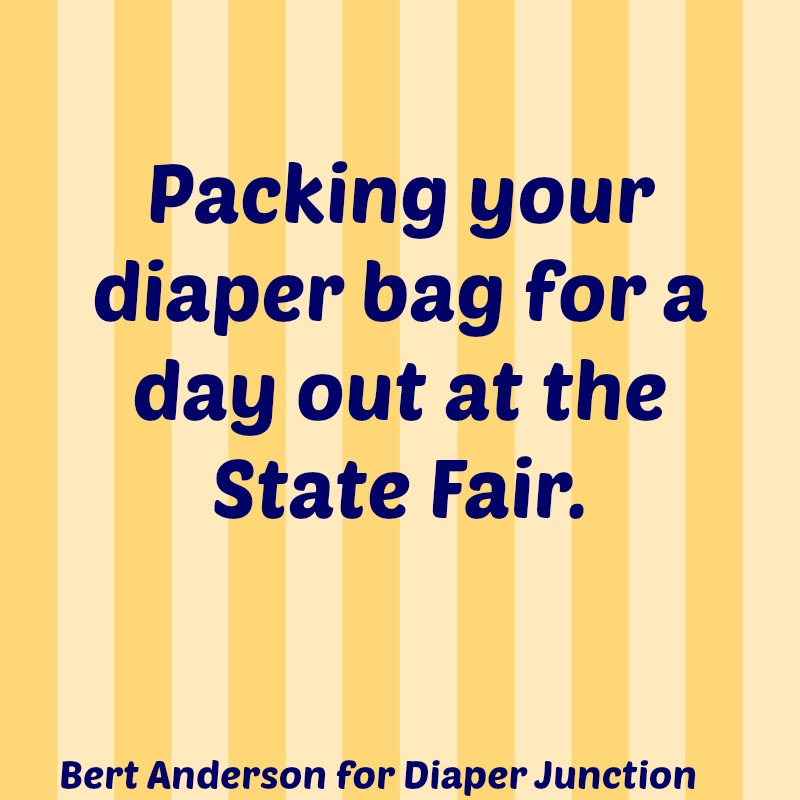 minnesota,fair,cloth diapers