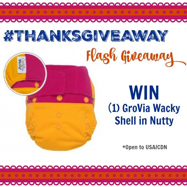 It's a Diaper Junction Flash GiveAway!!!