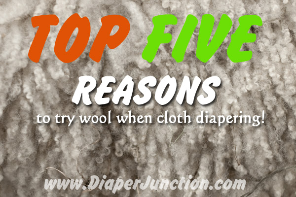 reasons to try wool