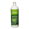 Bac-Out Stain and Odor Eliminator