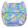 Blueberry ORGANIC Simplex One Size All In One Diaper