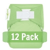 bumGenius Newborn All In One Diaper 12 Pack