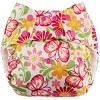 Swaddlebees Simplex One Size All In One Diaper