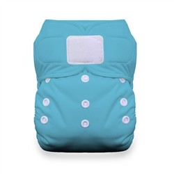Thirsties One Size AIO Diaper Certified Preowned