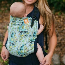 Tula Ergonomic Toddler Carrier