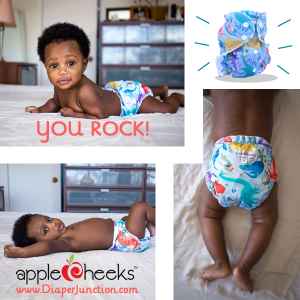 AppleCheeks 'You Rock' Dinosaur Cloth Diaper Print In Stock!