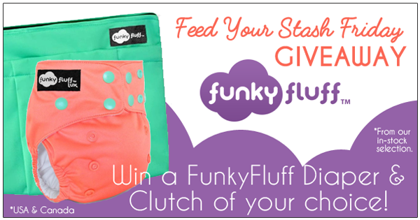 5/6/16 FYSF, Win a Funky Fluff Diaper and Wetbag Clutch!