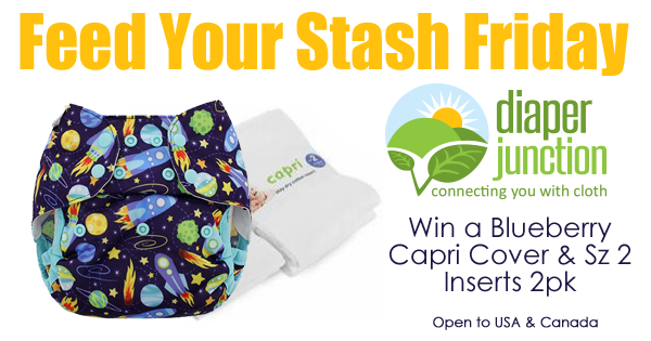 7/13/18 FYSF, Win a Blueberry Capri Cover + Inserts 2pk!