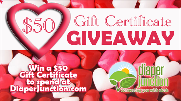 2/5/16 FYSF, Win a $50 Gift Certificate to DiaperJunction.com