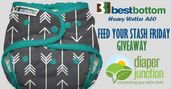 6/2/17 FYSF, Win a BestBottom Heavy Wetter AIO Cloth Diaper!