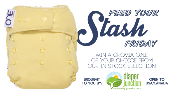 4/28/27 FYSF, Win a GroVia ONE One Size Cloth Diaper of your choice!