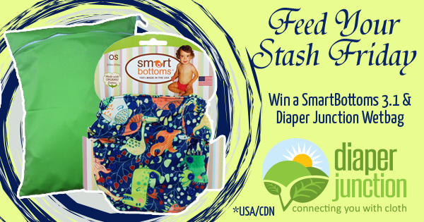 06/17/16 FYSF, Win a Smart Bottoms 3.1 & Wetbag