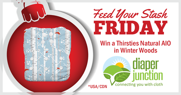 12/9/16 FYSF, Win a Thirsties Winter Woods Natural OS AIO!