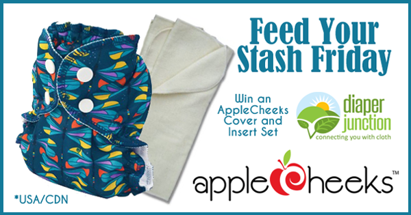 6/24/16 FYSF, Win an AppleCheeks Diaper Cover and Inserts!