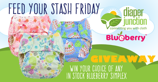 1/13/17 FYSF, Win a Blueberry Simplex Cloth Diaper of Your Choice!