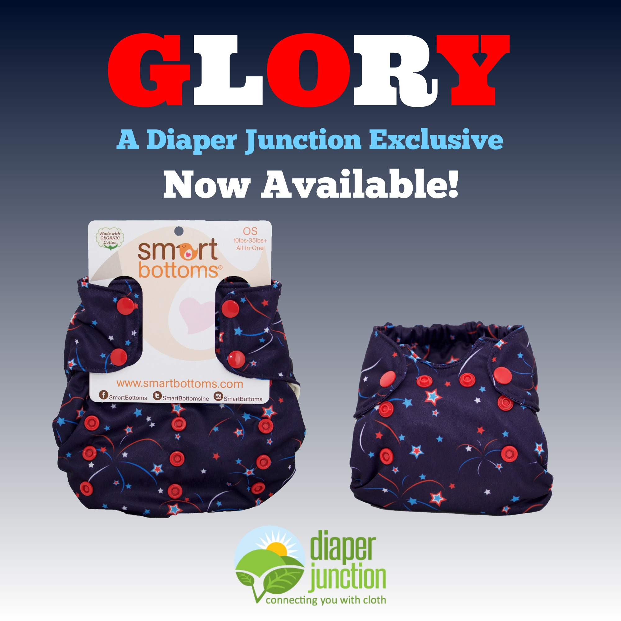 Glory, a Diaper Junction Exclusive from Smart Bottoms