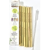 The Future Is Bamboo 6 Pack Bamboo Straws + Cleaning Brush